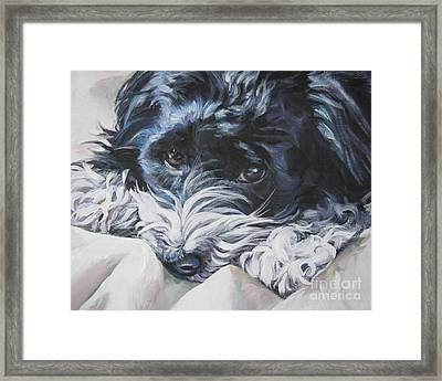 Havanese Black And White Framed Print