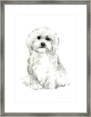 Maltese, Havanese Custom Dog Illustration, White Dog Art Print, Maltese Watercolor Painting Framed Print by Joanna Szmerdt