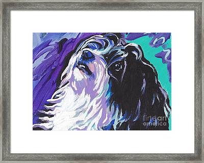 Havanese Framed Print by Lea S