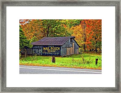 Have A Chaw Painted Framed Print