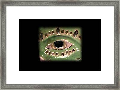 Have A Good Look Framed Print