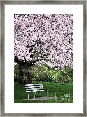 Framed Print featuring the photograph Have A Seat by Victor K