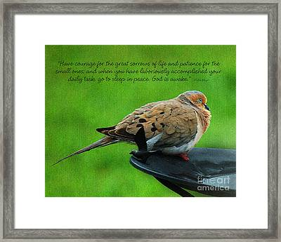Have Courage  Framed Print by Diane E Berry