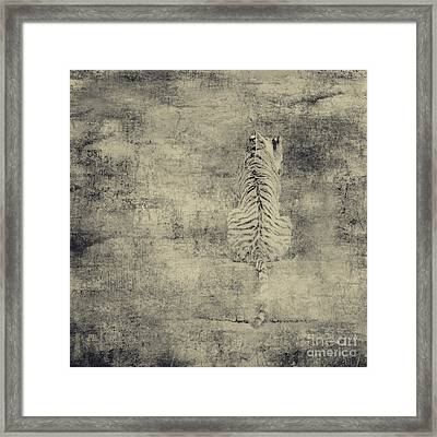 Have You Comprehended... Framed Print by Dana DiPasquale