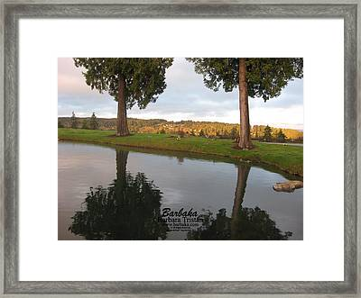 Framed Print featuring the photograph Haven Of Rest by Barbara Tristan