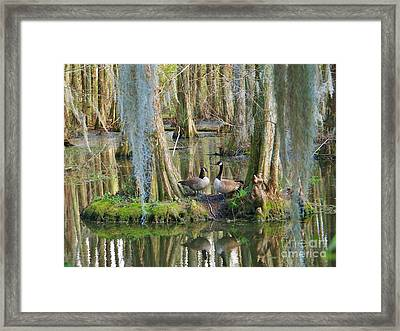 Haven Framed Print