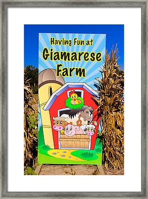 Having Fun On The Farm Framed Print by Colleen Kammerer