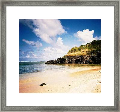 Hawaii Beach View Framed Print