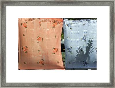 Hawaii Drying  Framed Print
