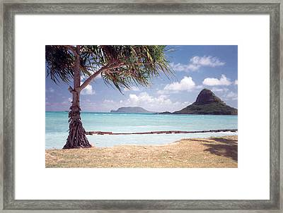 Hawaii Heaven Framed Print by Lori Mellen-Pagliaro