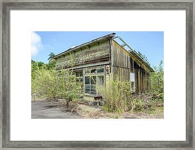 Hawaii Of Yesteryear Framed Print