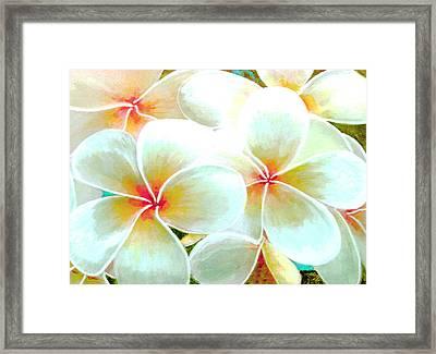 Hawaii Plumeria Frangipani Flowers #86 Framed Print by Donald k Hall