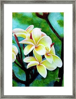 Hawaii Tropical Plumeria Flower #225 Framed Print by Donald k Hall