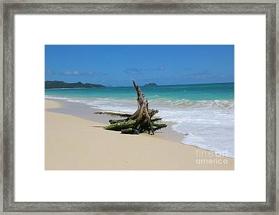Hawaiian Beach Framed Print by Anthony Jones