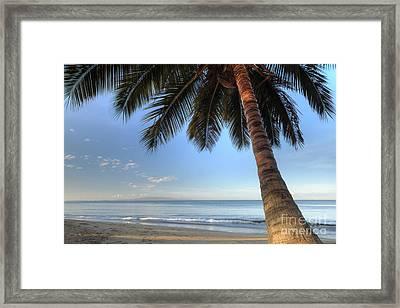 Hawaiian Coconut Palm Sunrise 2 Framed Print