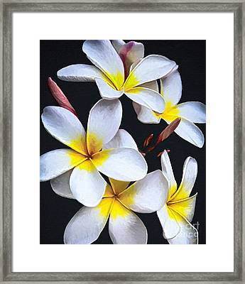 Hawaiian Dreaming Framed Print
