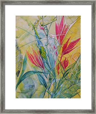 Hawaiian Dreams Framed Print
