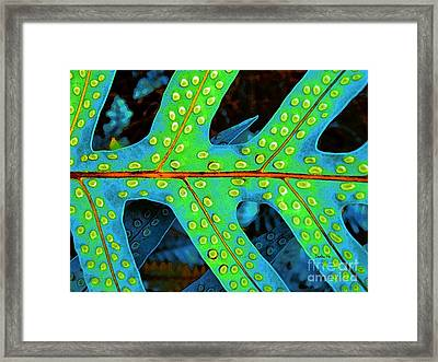 Hawaiian Fern Leaf Framed Print
