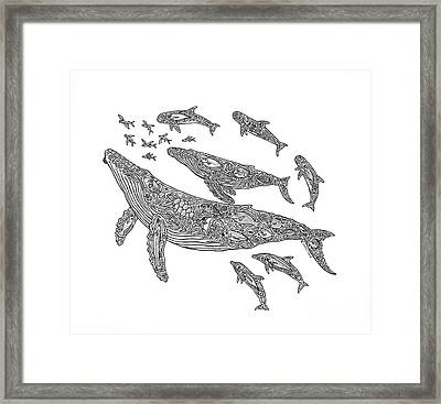Hawaiian Humpbacks Framed Print by Carol Lynne