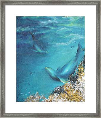 Framed Print featuring the painting Hawaiian Monk Seals by Dina Dargo
