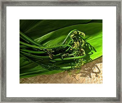 Hawaiian Pahole Fern Framed Print by James Temple