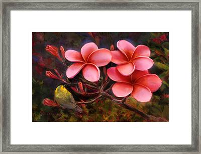 Framed Print featuring the painting Hawaiian Pink Plumeria And Amakihi Bird by Karen Whitworth