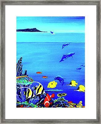Hawaiian Reef Fish Nimo #193 Framed Print by Donald k Hall