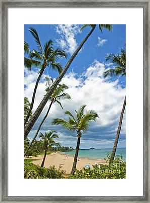 Hawaiian Shore On Maui 14 Framed Print by Micah May