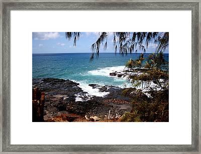 Hawaiian Snapshot Framed Print by Annie Babineau