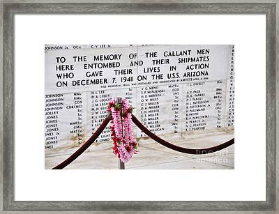 Hawaii's Tribute Framed Print by Andy Smy