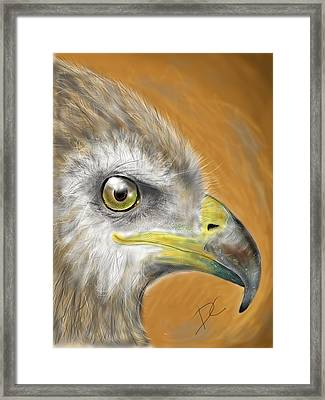 Framed Print featuring the digital art Hawk by Darren Cannell
