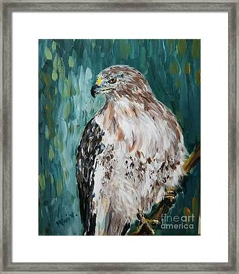 Framed Print featuring the painting Hawk by Maria Langgle