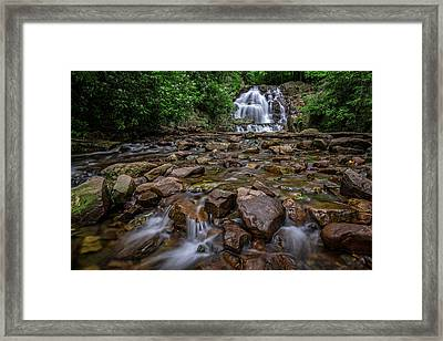 Hawk Run Framed Print