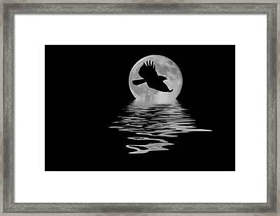 Hawk In The Moonlight Framed Print