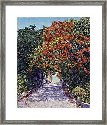 Hawkins Hill Framed Print