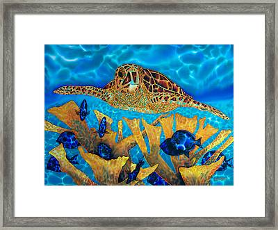 Hawksbill Sea  Turtle Framed Print