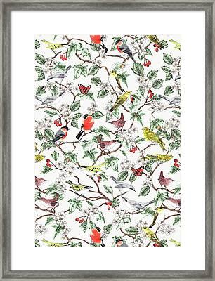 Hawthorn Framed Print