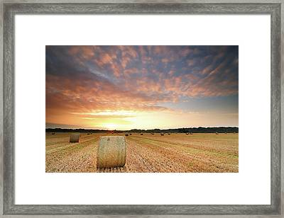 Hay Bale Field At Sunrise Framed Print by Stu Meech