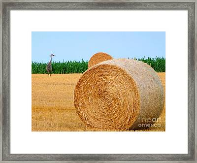 Hay Bale With Crane Framed Print