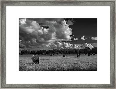 Hay Bales Bw Framed Print by Paul Freidlund