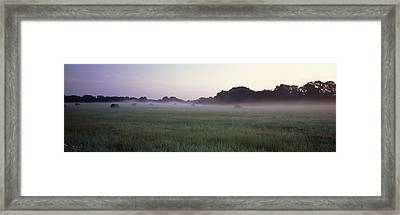 Hay Bales In A Field, Texas, Usa Framed Print