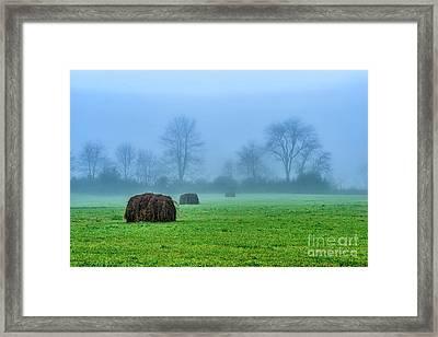 Hay Bales In Fog Framed Print by Thomas R Fletcher