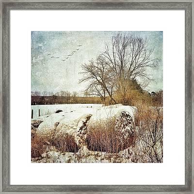 Hay Bales In Snow Framed Print