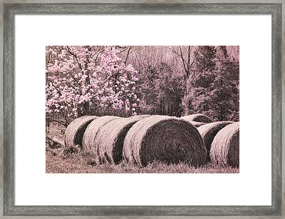 Hay Bales Framed Print by JAMART Photography