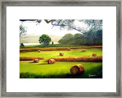 Hay Bales Framed Print by Julie Lamons