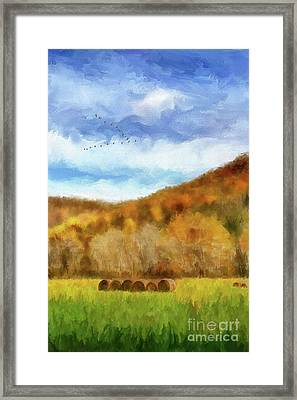 Framed Print featuring the photograph Hay Bales by Lois Bryan