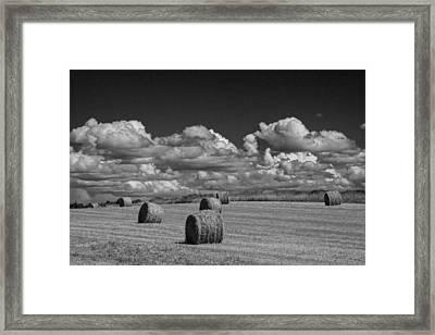 Hay Bales On A Farm Field On Prince Edward Island Framed Print