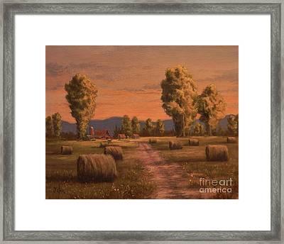 Hay Bales Framed Print by Paul K Hill