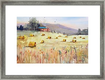 Hay Bales Framed Print by Ryan Radke