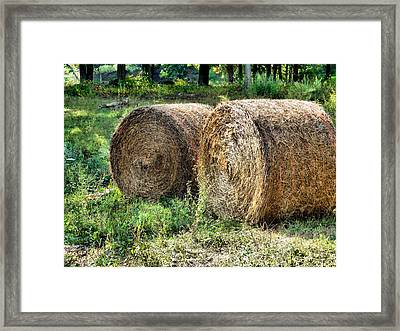 Hay Bay Rolls 3 Framed Print by Lanjee Chee